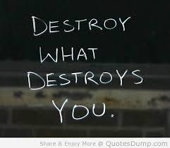 destroy qyote